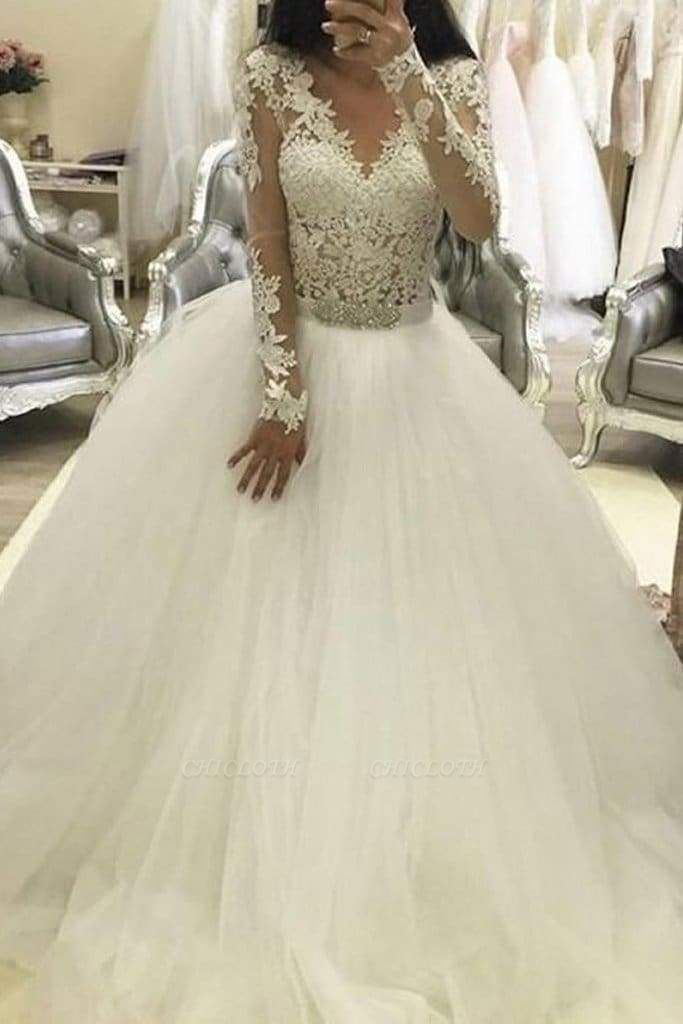 Chicloth Ball Gown Sleeves V Neck Tulle Princess Long Wedding Dress