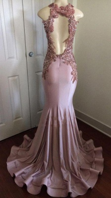 Chicloth Shiny Pink Mermaid Prom Dresses | Appliques Open Back Evening Gowns_2