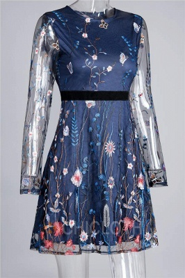 A  Chicloth Embroidered Lace-Paneled Long-Sleeve Mini Dress_3