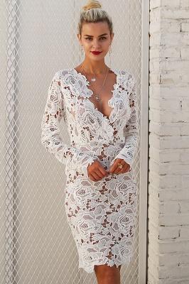 A| Chicloth Fashion V Neck Long Sleeve Lace Bodycon Midi Dress_7