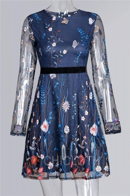 A  Chicloth Embroidered Lace-Paneled Long-Sleeve Mini Dress_2