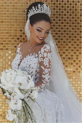 SDBA9863 Luxury Lace Mermaid Long Sleeve Wedding Dresses_2