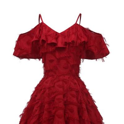 Burgundy V Neck Women Feathers Spaghetti Straps Dress_5