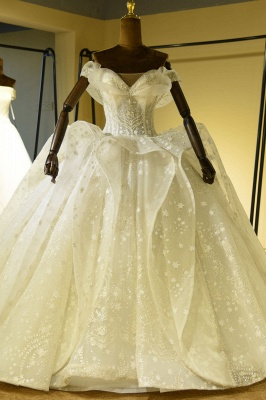 Chicloh Eye-catching Lace-up Tulle Ball Gown Wedding Dress_1