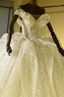 Chicloh Eye-catching Lace-up Tulle Ball Gown Wedding Dress_6