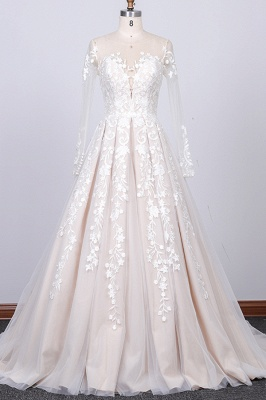 Chicloth Long Sleeve Appliques Tulle A-line Wedding Dress_1