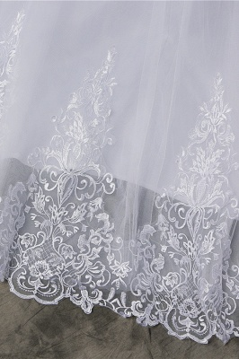 Chicloth Elegant Appliques Lace Tulle A-line Wedding Dress_7