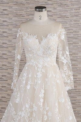 Chicloth Illusion Long Sleeve Applqiues Tulle Wedding Dress_5