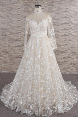 Chicloth Illusion Long Sleeve Applqiues Tulle Wedding Dress_1