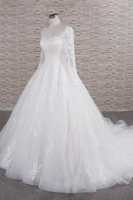 Chicloth Graceful Appliques Long Sleeve A-line Wedding Dress_4