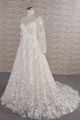 Chicloth Illusion Long Sleeve Applqiues Tulle Wedding Dress_4