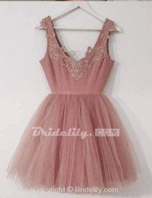 Chicloth A-Line V-Neck Blush Pink Sleeveless Homecoming Appliqued Short Tulle Prom Dress_2