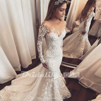 Chicloth Gorgeous Mermaid Illusion Long Sleeves Tulle Appliques Beach Wedding Dress_3