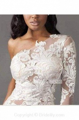 Chicloth One Shoulder Long Sleeve Tulle Lace Mermaid Wedding Dress_2