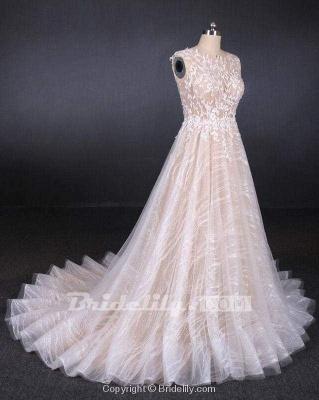 Chicloth Puffy Sleeveless Lace Elegant A Line Backless Wedding Dress_3
