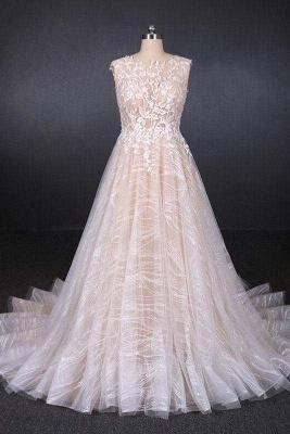 Chicloth Puffy Sleeveless Lace Elegant A Line Backless Wedding Dress_1