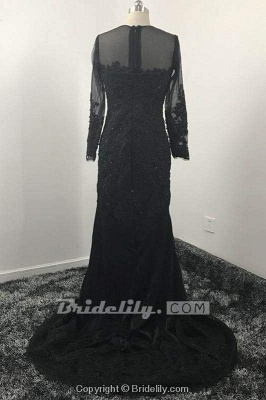 Chicloth Mermaid Dresses Long Sleeves Lace Appliques Sheer Jewel Neck Prom Dress_2