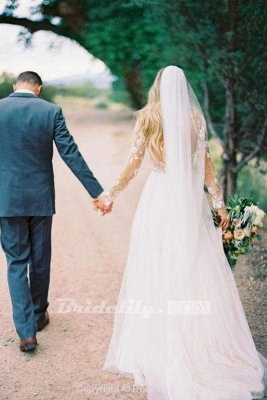 Chicloth Chic A-line Long Sleeve Lace Backless Country Wedding Dress_8