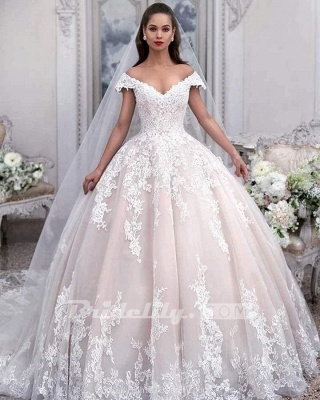 Chicloth Light Pink Off the Shoulder Ball Gown Tulle with Appliques Wedding Dress_2