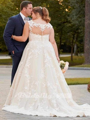 Chicloth Gorgeous V Neck Appliques Lace Bowknot Tulle Wedding Dresses_2