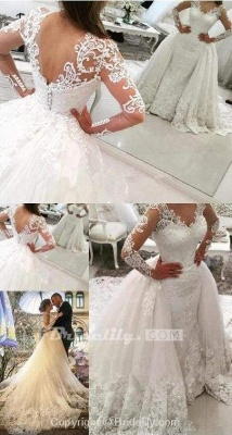 Chicloth Gorgeous Ivory V-Neck Long Sleeves Appliques Watteau Train Wedding Dress_3