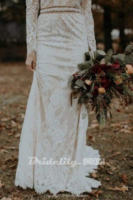 Chicloth Vintage Long Sleeves Backless Rustic Lace Wedding Dress_4