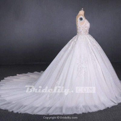 Chicloth Ball Gown Sheer Neck Sleeveless White Lace Appliqued Wedding Dress_3
