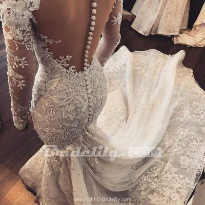 Chicloth Gorgeous Mermaid Illusion Long Sleeves Tulle Appliques Beach Wedding Dress_2