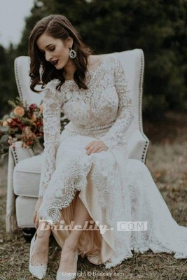 Chicloth Vintage Long Sleeves Backless Rustic Lace Wedding Dress_2