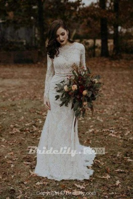Chicloth Vintage Long Sleeves Backless Rustic Lace Wedding Dress_6