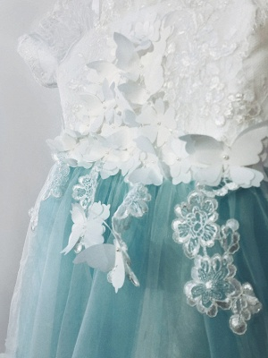 Ball Gown Sweep / Brush Train Wedding / Birthday / Pageant Flower Girl Dresses - Tulle / Cotton Short Sleeve Jewel Neck With Lace / Embroidery / Appliques_7