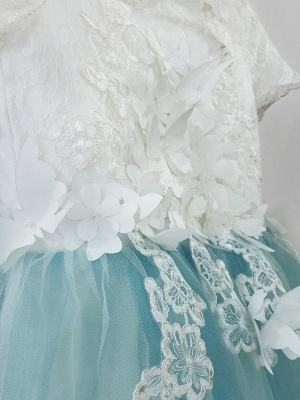 Ball Gown Sweep / Brush Train Wedding / Birthday / Pageant Flower Girl Dresses - Tulle / Cotton Short Sleeve Jewel Neck With Lace / Embroidery / Appliques_6