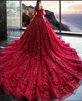 Hot Sale Red Long Sleeve Prom Dresses Lace Evening Gowns_3