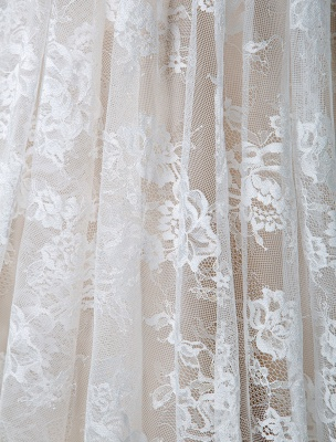 Cheap Wedding Dress 2021 V Neck A Line Short Sleeve Deep V Backless Lace Wedding Gowns_9