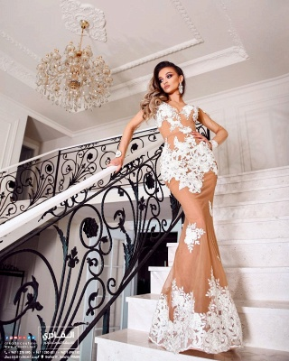 ZY083 Beautiful Evening Dresses With Sleeves Long Lace Prom Dresses_2