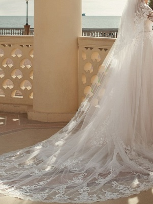 A-Line Wedding Dresses V Neck Sweep \ Brush Train Lace Tulle 3\4 Length Sleeve Country Plus Size_2