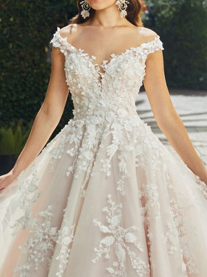 A-Line Wedding Dresses V Neck Chapel Train Lace Tulle Sleeveless Sexy Wedding Dress in Color See-Through_3