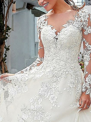 A-Line Wedding Dresses V Neck Sweep \ Brush Train Tulle Long Sleeve_3
