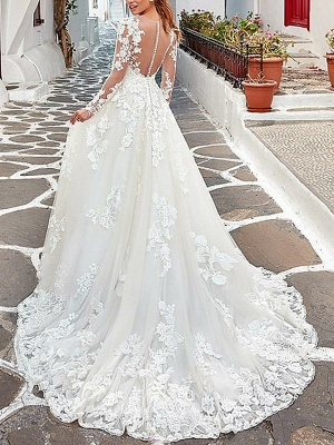 A-Line Wedding Dresses V Neck Sweep \ Brush Train Tulle Long Sleeve_2