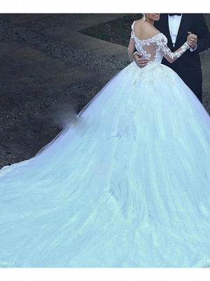 A-Line Wedding Dresses V Neck Court Train Tulle Long Sleeve_2