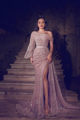 ZY103 Designer Evening Dresses Long Glitter   Prom Dresses With Lace_1