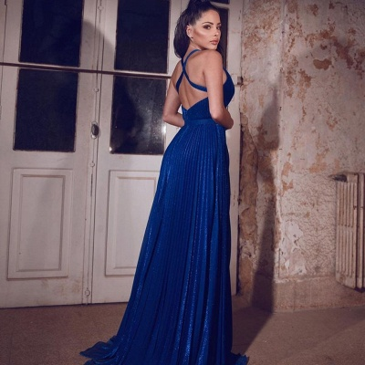ZY088 Simple Evening Dresses Long Blue   Evening Wear V Neckline_3