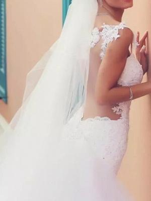 Mermaid \ Trumpet Wedding Dresses Spaghetti Strap Court Train Polyester Sleeveless Country Plus Size_4