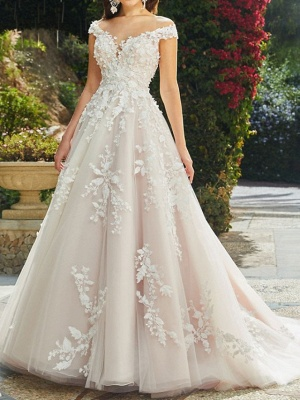 A-Line Wedding Dresses V Neck Chapel Train Lace Tulle Sleeveless Sexy Wedding Dress in Color See-Through_1