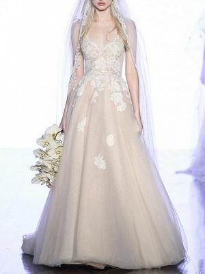 A-Line Wedding Dresses V Neck Sweep \ Brush Train Lace Tulle Spaghetti Strap Boho Plus Size_3