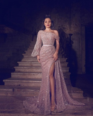 ZY103 Designer Evening Dresses Long Glitter   Prom Dresses With Lace_2