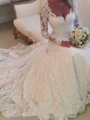 A-Line Wedding Dresses V Neck Chapel Train Lace Tulle Long Sleeve Country_1