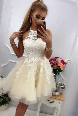ZY220 Chic Cocktail Dresses With Lace Prom Dresses Party Dresses Short_2