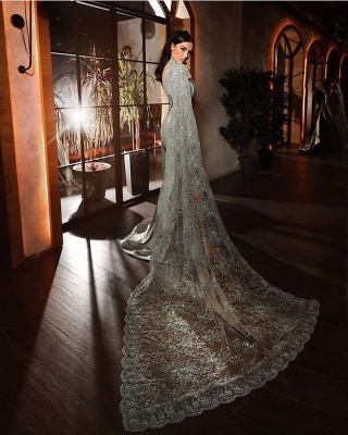 ZY188 Silver Evening Dresses With Lace Beautiful Prom Dresses Long Sleeves_3