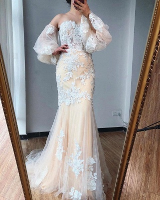 ZY255 Evening Dress Long With Sleeves Wonderful Evening Dresses With Lace_2